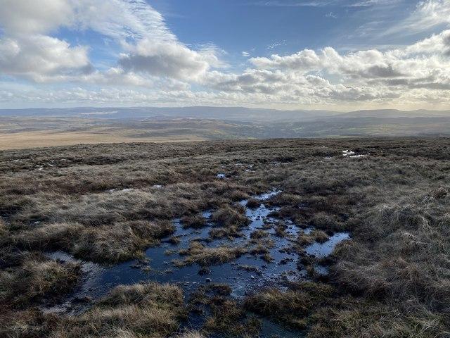 Wet uplands