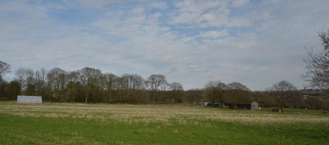 Field by Syke Lane, Priestley Green