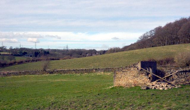 Fields alongside Rookes Lane, Norwood Green