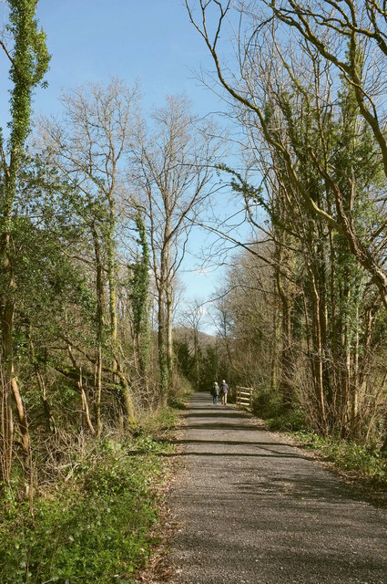 Wray Valley Trail near Higher Combe Wood