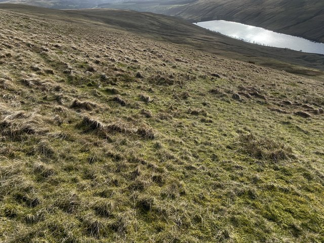 Slopes of Pant Gilfach Wen
