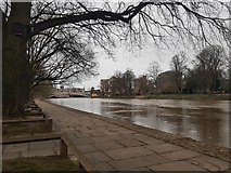 SE5952 : River Ouse by DS Pugh