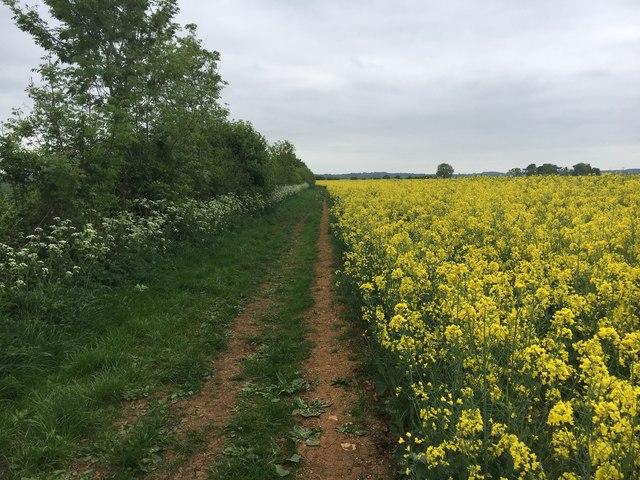 Bridleway to Spratt's Farm