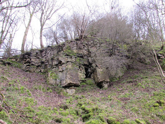 Disused Limestone Quarry in Scar Spring Wood