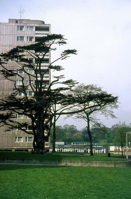 Alton West Estate, Roehampton, 1966 – 8
