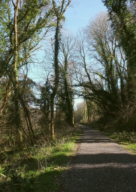 Wray Valley Trail in Higher Combe Wood
