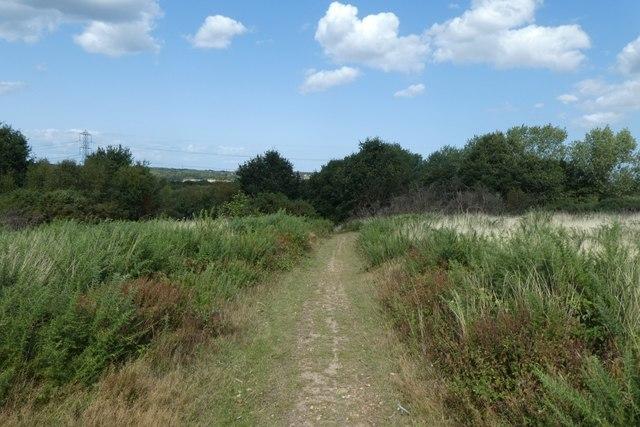 Path on the heath