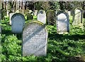 TG2408 : Graves of the Dew Family by Evelyn Simak