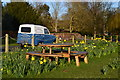 SU8608 : Picnic table and daffodils on the green at East Lavant by David Martin