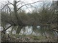 SE4327 : Carr along Lin Dike by Christine Johnstone