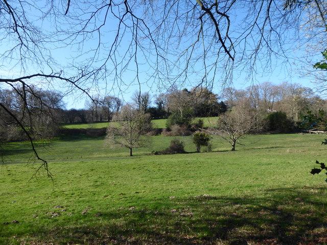Field north-west of Bunch Lane