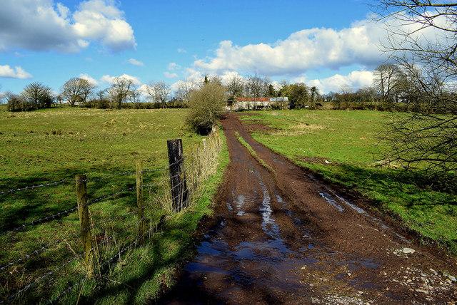Muddy lane, Roscavey