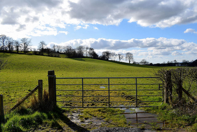 Muddy entrance to field, Curr