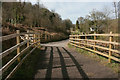 SX7783 : Wray Valley Trail near Willowrey Farm by Derek Harper