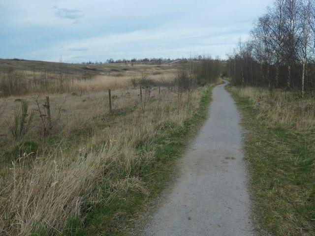 Riverbank trail, RSPB Fairburn Ings