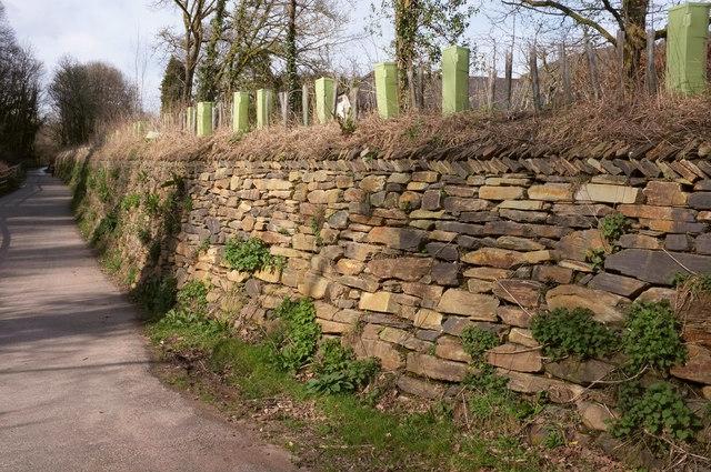 Wall, Willowrey Farm