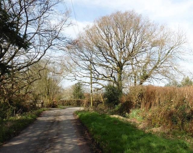 Track near Moorlands Farm