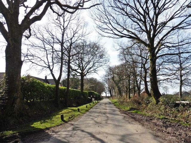 Minor road to Sidbury