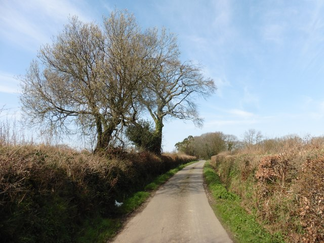 Minor road to Ottery St Mary