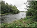 NT7132 : River  Teviot  heading  south by Martin Dawes