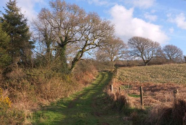 Track near Higher Elsford