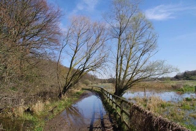 (Covid-19_6 Exercise) Damp Path by Brannets Wood