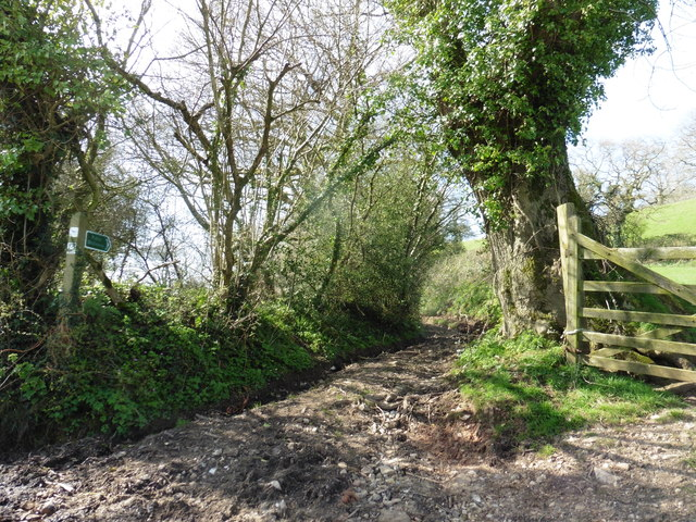 Bridleway to Southleigh Hills