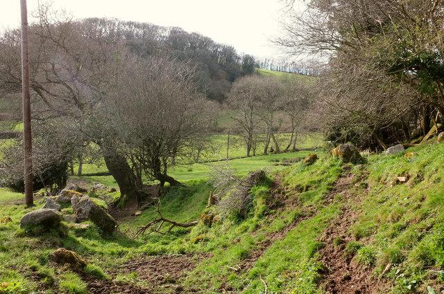 Bridleway near Wray Barton