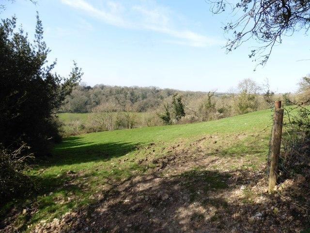Farmland above Rockenhayne
