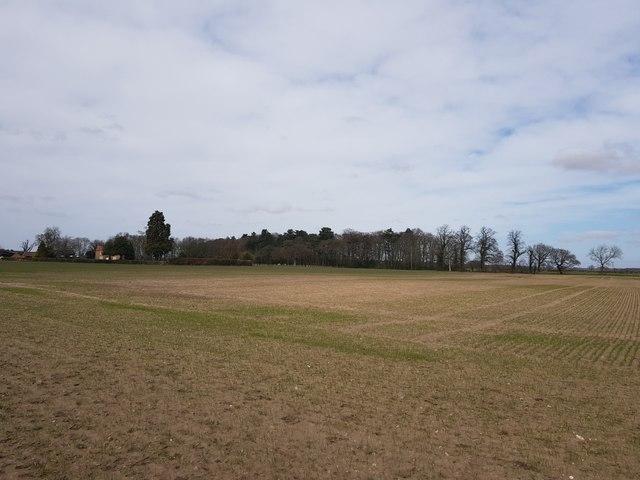 Farmland near Londesborough Lodge