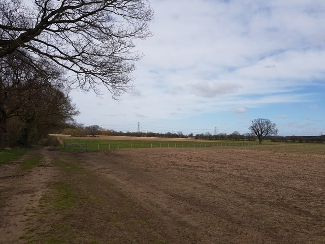 Bridleway on Kexby Stray