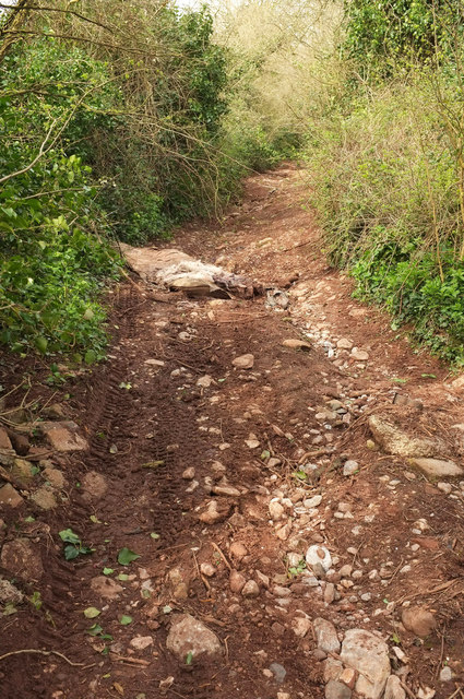 Fly-tipping, Downway Lane, Daccombe