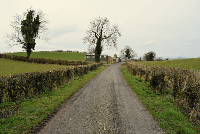 Millbrae Road, Mullagharn (Young)