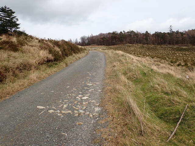 The Tollymore Southern Perimeter Road between The Drinns and Curraghard
