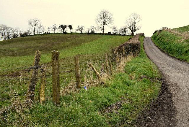 Field with slurry, Dunwish