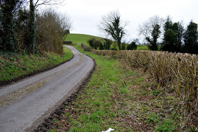 Grass verge and bend along Dunwish Road