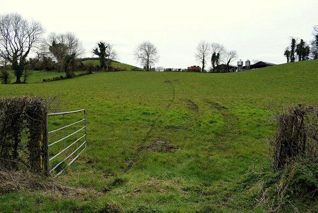 An open field, Mullagharn