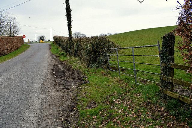 Corlea Road, Gillygooly