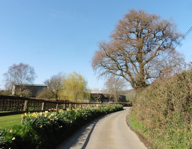 Minor road to Northleigh