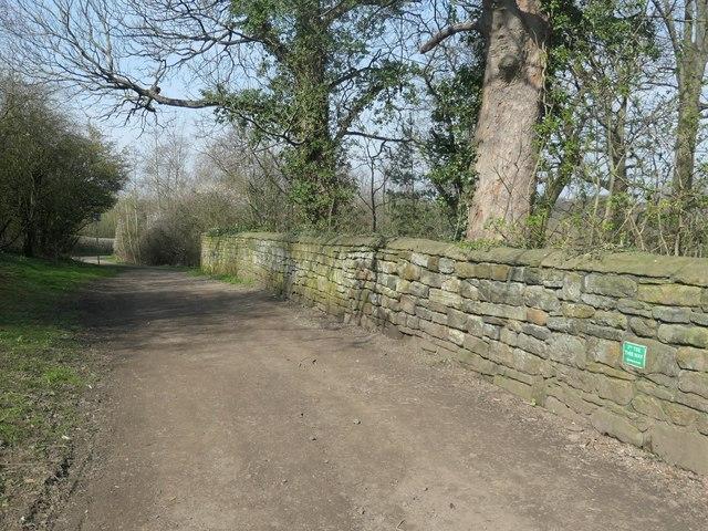 Hatfeild Hall estate boundary wall, Finkin Lane