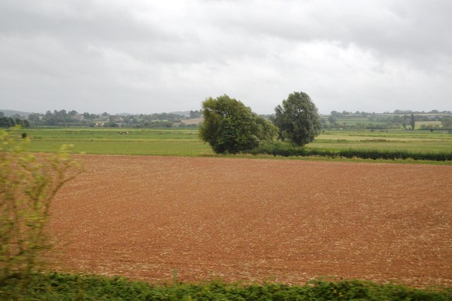 Farmland by Cogload Junction