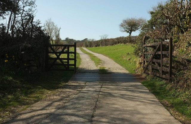 Farm track to Reddacleave