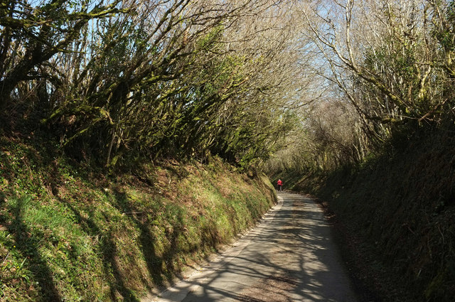 Lane to Reddacleave Kiln Cross