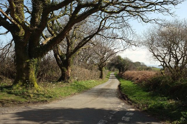 Lane from Reddacleave Kiln Cross