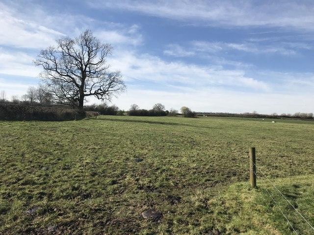 Farmland near Hare Holes Farm