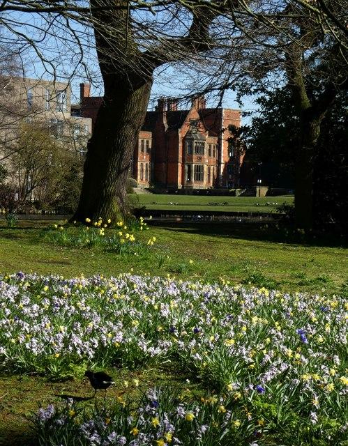 Spring flowers and Heslington Hall