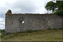 S4943 : Kells Priory - ruined outlier building by N Chadwick