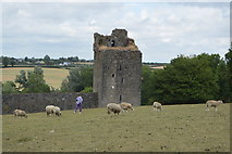 S4943 : Kells Priory - ruined tower by N Chadwick