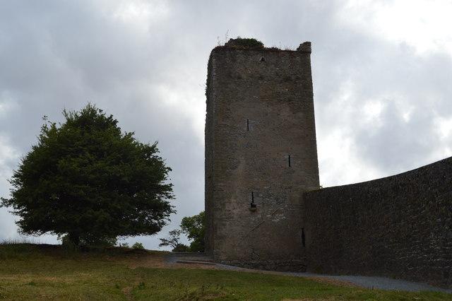 Kells Priory - tower