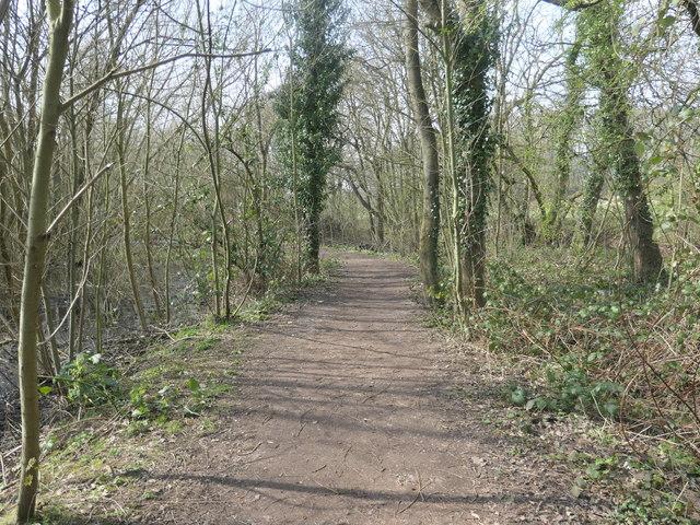 Perimeter path, Stanley Marsh local nature reserve